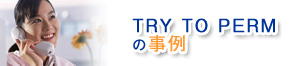 Try to permの事例